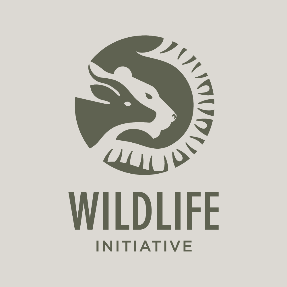 WILDLIFE_Tavola disegno 1