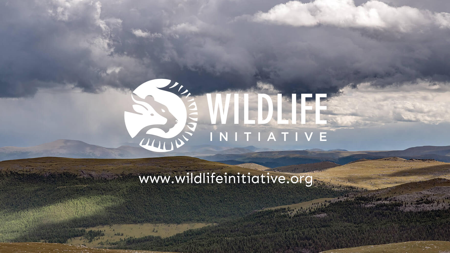 Wildlife Initiative